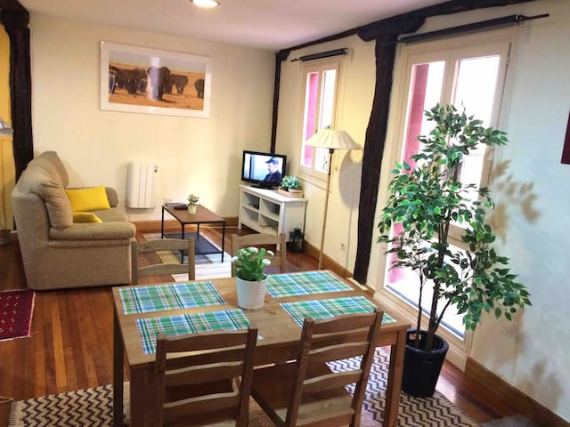 COZY APARTMENT   in Bilbao center.  N1.