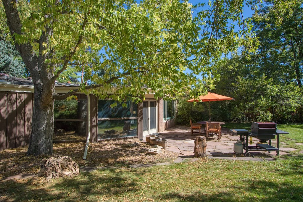 Backyard with picnic table and grille