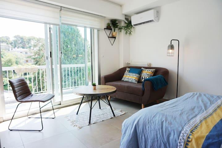 Charmant studio lumineux rénové avec balcon /clim