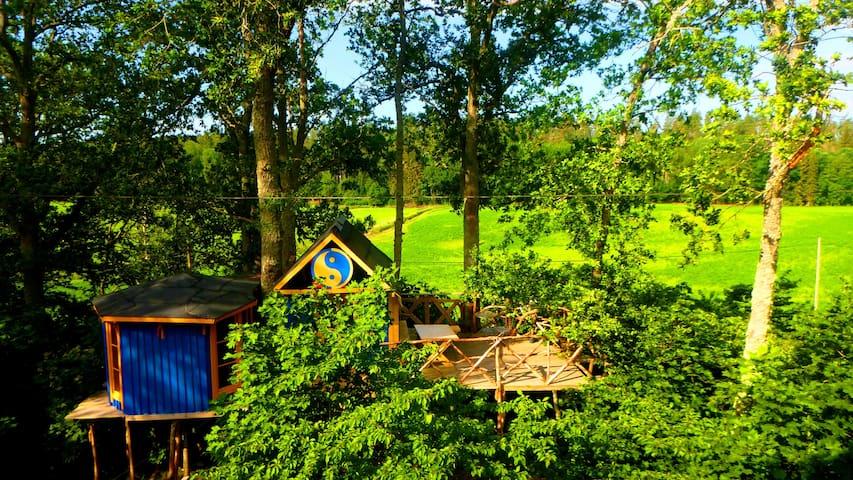 SWEDEN YIN YANG TREE HOUSE