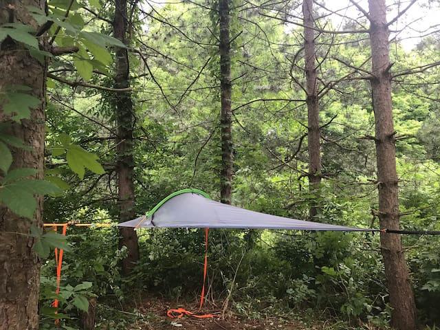 "Camp SkyTent: ""UNA"" Farm Manor Experience"