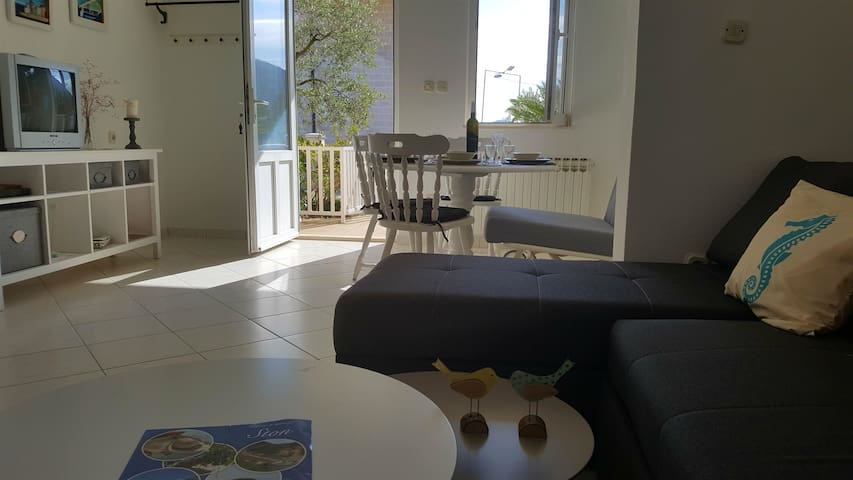 One bedroom Apartment, seaside in Mali Ston, Terrace