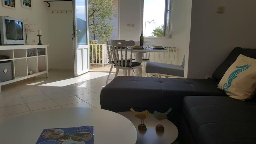 Appartement Au bord de mer, avec une chambre à coucher, à Mali Ston, La terrasse