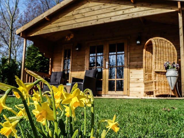 Cozy summer house near Flower Region and Amsterdam - Zwaanshoek - Cabin