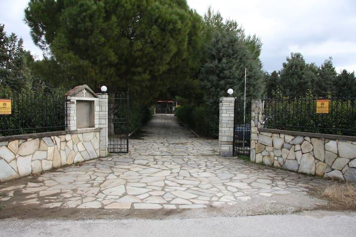 VILLA AMPELOS - Thessaloniki - Villa