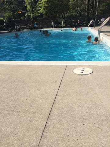 Swimming Pool during the summer