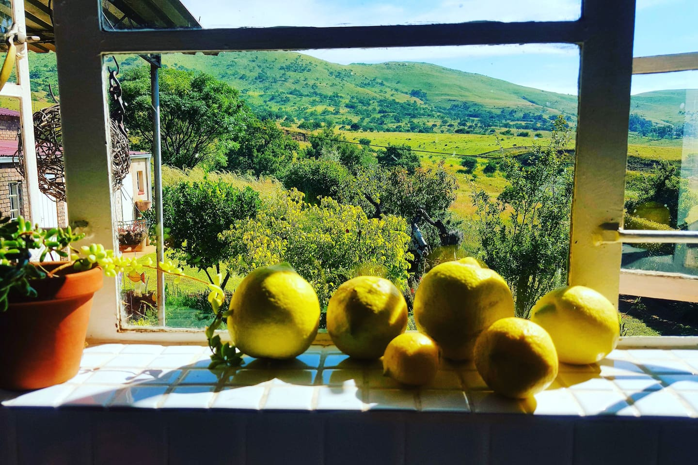The house revolves around the kitchen, which has an awesome view of the countryside.