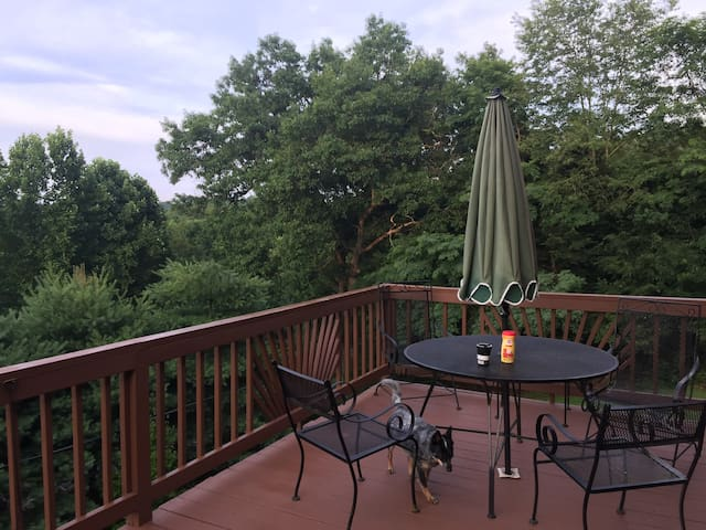 Rosie's Rental with treetop views enjoy a retreat!