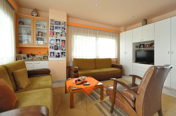 livingroom and tv