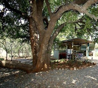 Rustic Bush Camp Close to Lake Jozini