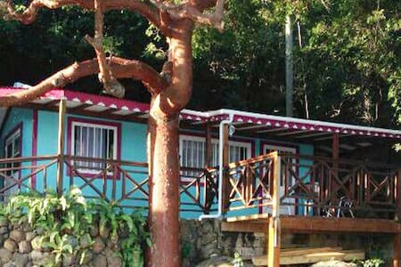 Caribbean Cottage with Seaview - Brewers Bay