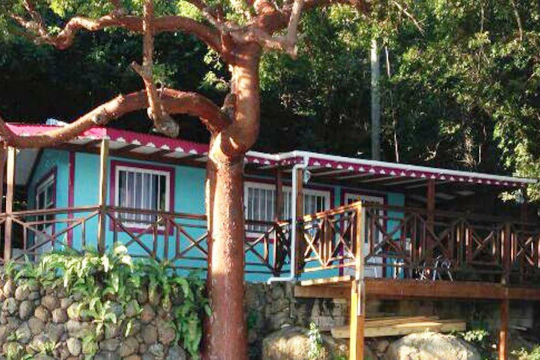 Cottage Angelica