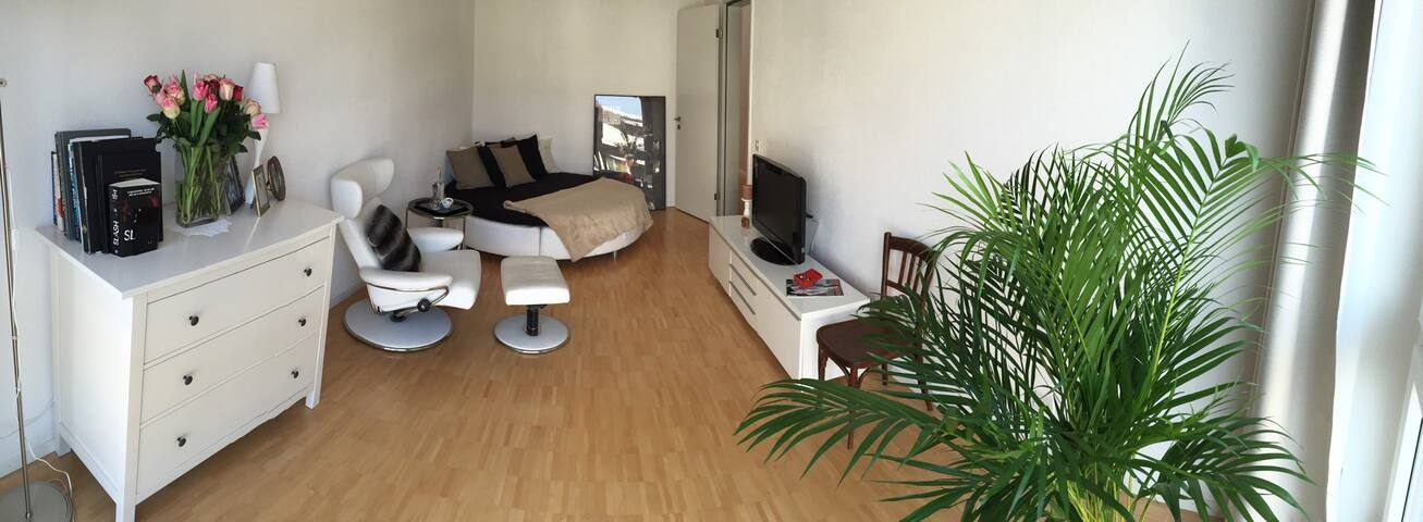 Spacious Room close to Lake Lucerne - Lucern - Byt