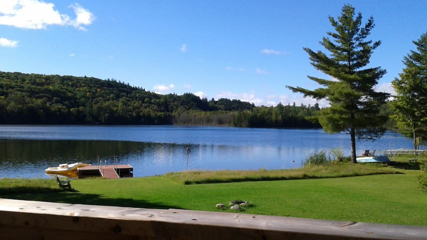 Lazy Bear Lodge Pine Lake - Gracefield - Cabin