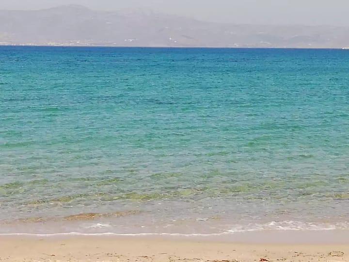 On a magnificent sandy beach