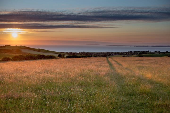 Our Wildflower meadows and sea views