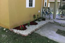 Angled view of the Front Garden bed. and driveway.