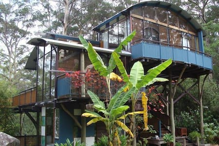 Skyhouse Retreat Your Window onto The Forest