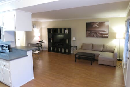 Spacious, Newly Renovated 1BD w extra pullout bed! - Los Angeles