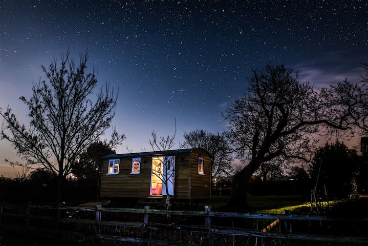 The hut by night