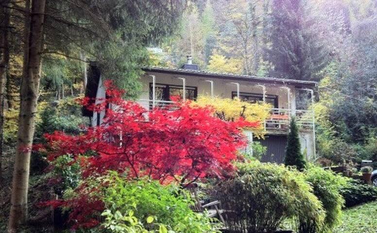 Haus in der Natur (Wald und Weinberge)