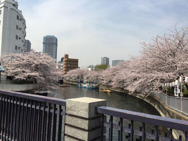 3mins 日本橋駅(東京駅) ; 5min 門前仲町駅 - Kōtō-ku - 아파트