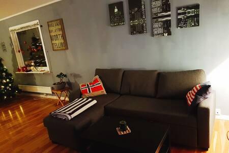 Rolig og sentral room i lys of koslig leilighet