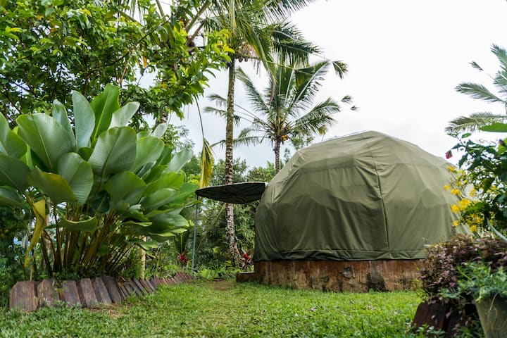 Sleeping under the start in Bali