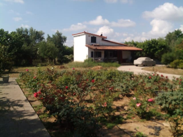 Beautiful Townhouse with a rose garden. - Meropi