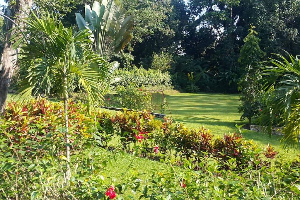 Amplios y hermosos jardines