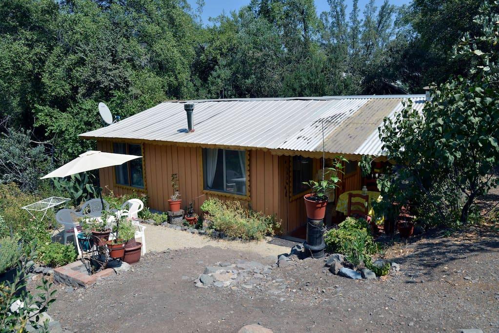 acogedora caba u00f1a en la monta u00f1a nature lodges for rent in homes for rent san jose ca house for rent san jose del cabo