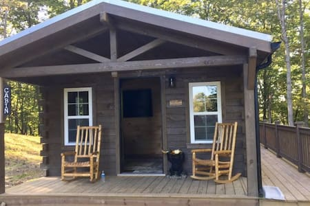 Amish-Built Log Cabin with Private Ravine Views