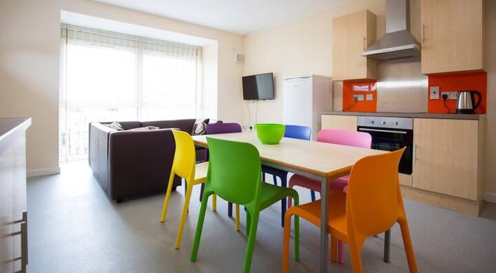 Student Only Property: Special Mezzanine Studio