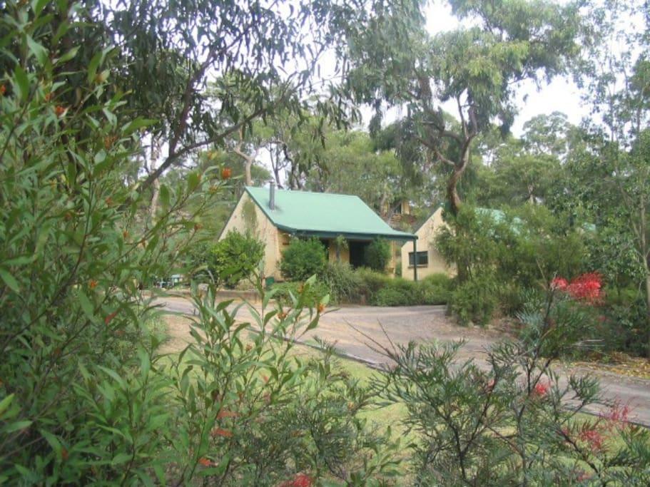 Banksia Ledge Cottage, Snuggle Pie next door, then Lemongrass.  Pie