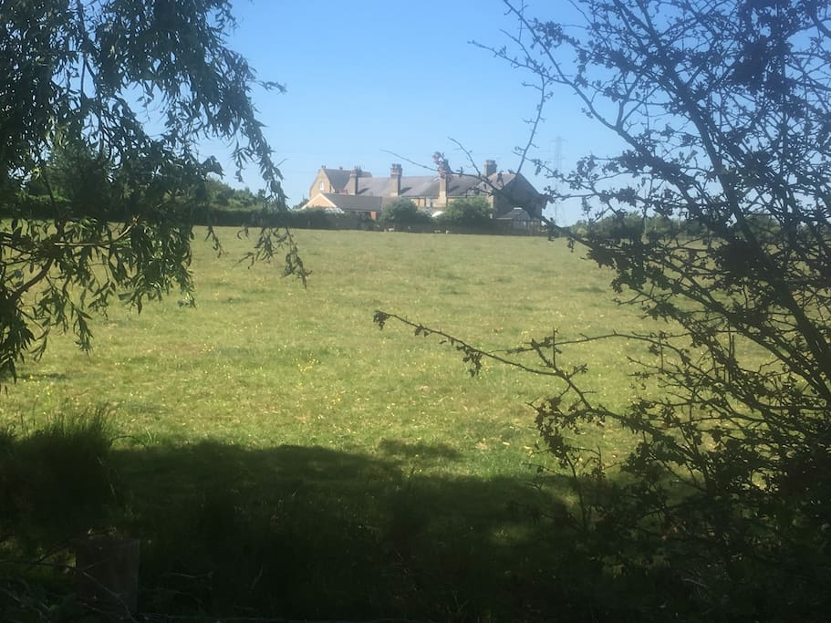 A view of the cottages from the nature reserve