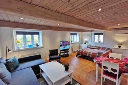 Vista - 25 m2 Hygge på landet - 4/5 sovepladser