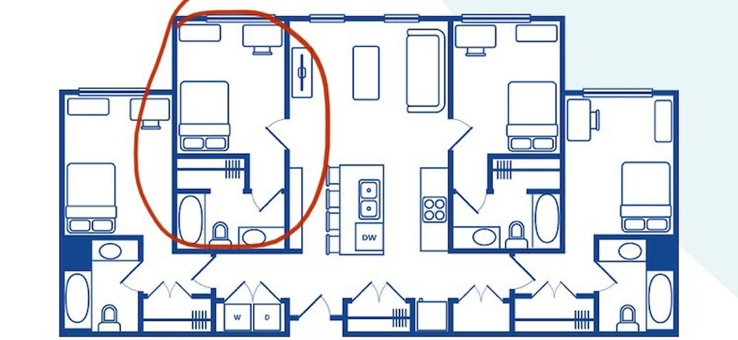 Student apartment sublease