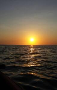 Ocean view mafia