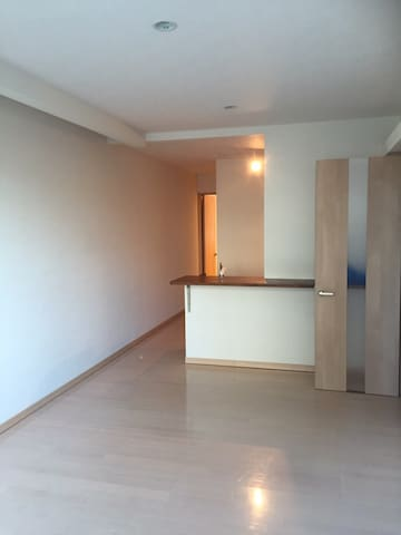 Rooms in the city center,is a simple 1 bedroom. - 旭川市 - Apartmen