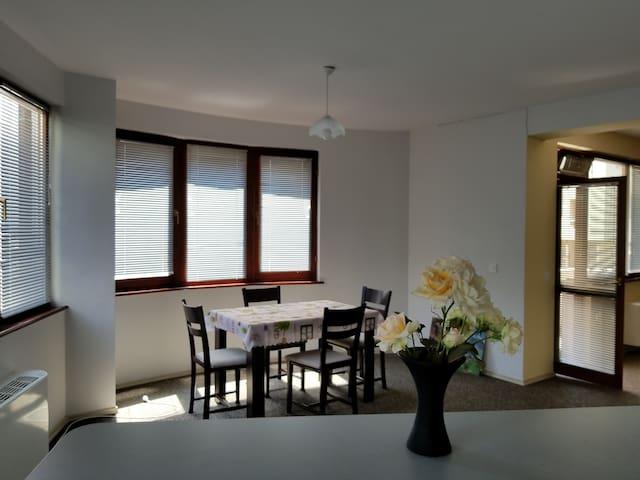 Plovdiv Apartment Edison