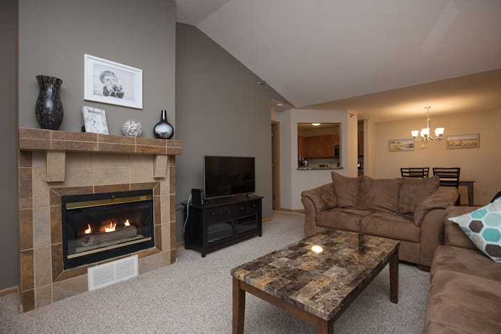 Roomy APT Less than 1.5m from Mayo Clinic!