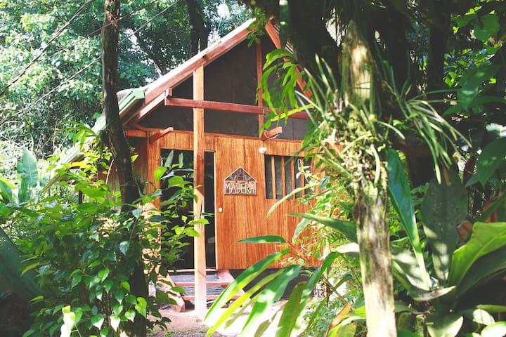 Madera - Jungle and Pacific