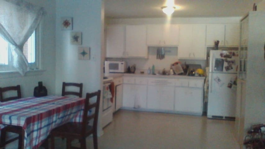 Bright spacious place, close to everything! - Ottawa - Apartment