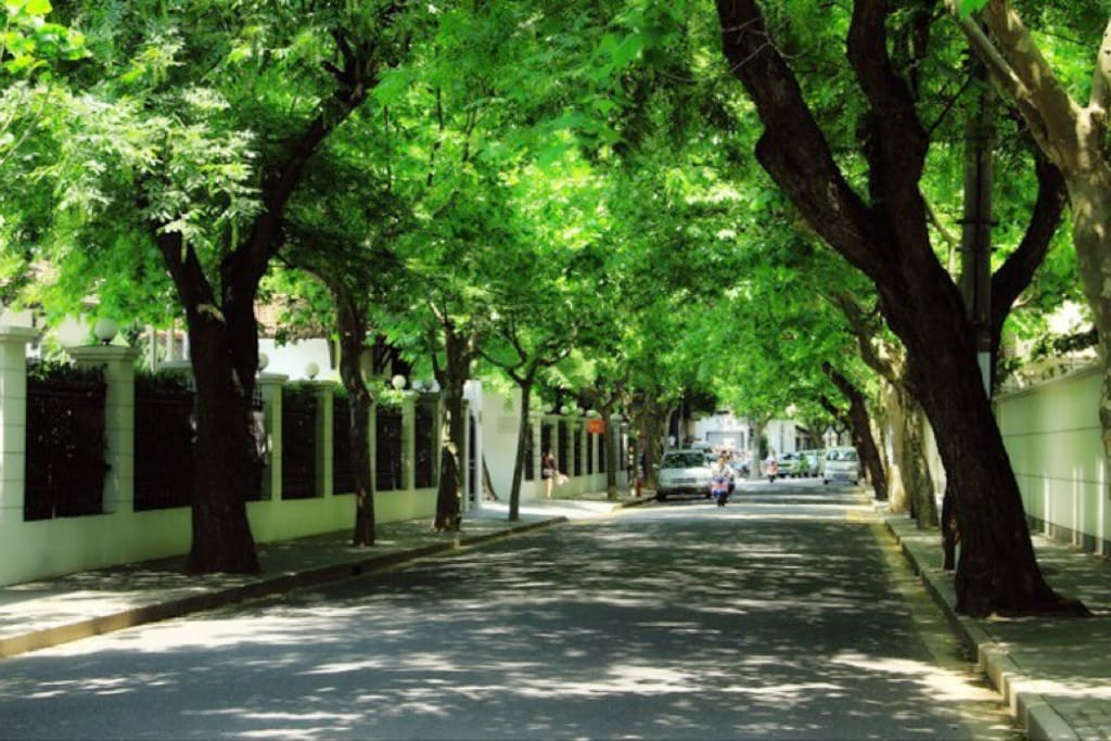 Green and quiet road