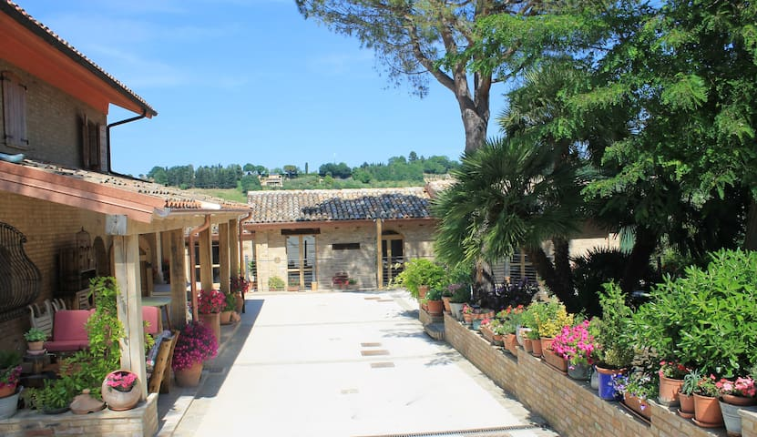 Bed & Breakfast Il Cavallino