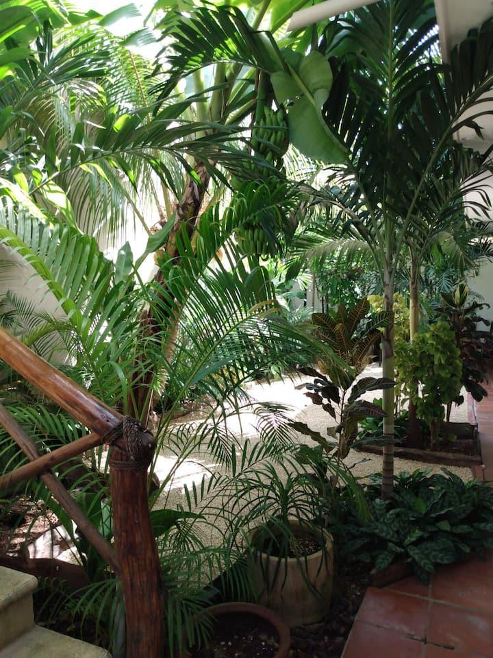 Casa Lupita Tulum. 2 Relajación y naturaleza