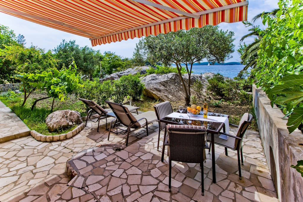 terrace and the garden