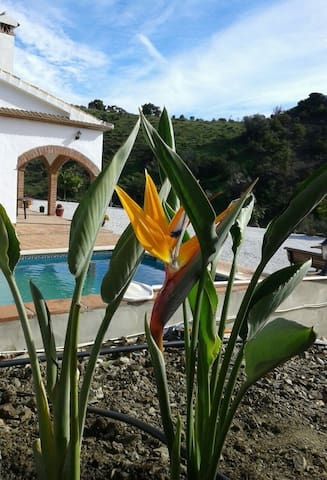 1001 nights: Magic location, house+POOL, sleep 6 - Cútar - Hus