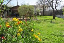 Jardin à disposition