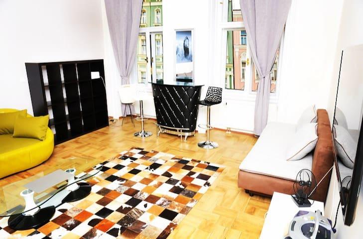 Spacey La JUNGLE duROI - FREE PARKING,SPEED WI-FI, - Prague - Apartmen